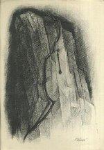 Krupej na skale