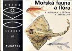 Morska fauna a flora