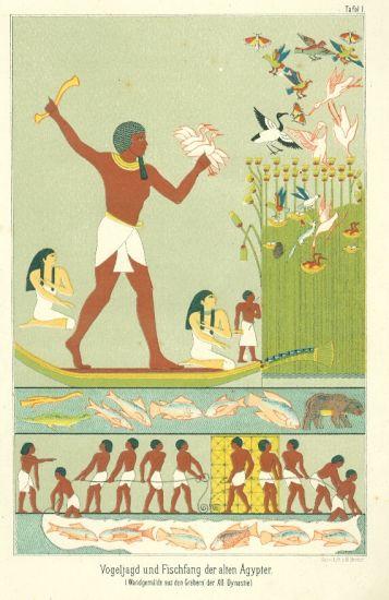 Egypt | antikvariat - detail grafiky